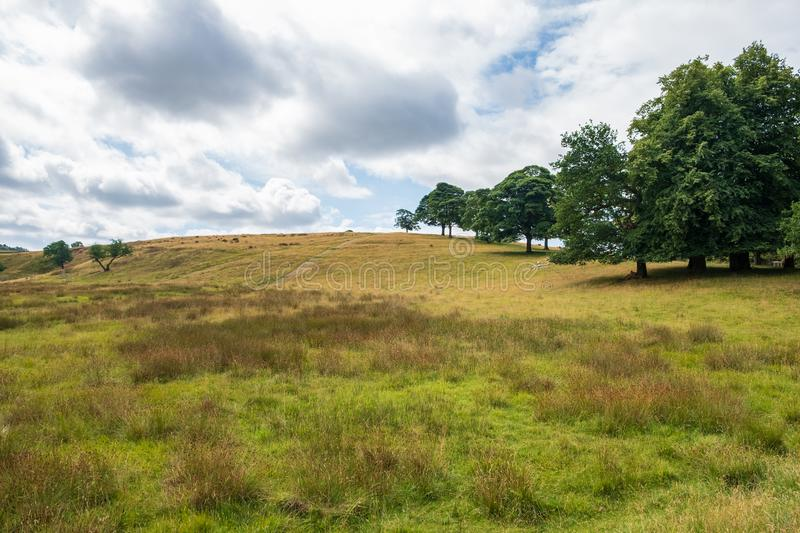 Landscape in Lyme Park estate. The estate is managed by the National Trust and consists of a mansion house surrounded by formal gardens, in a deer park in the stock images