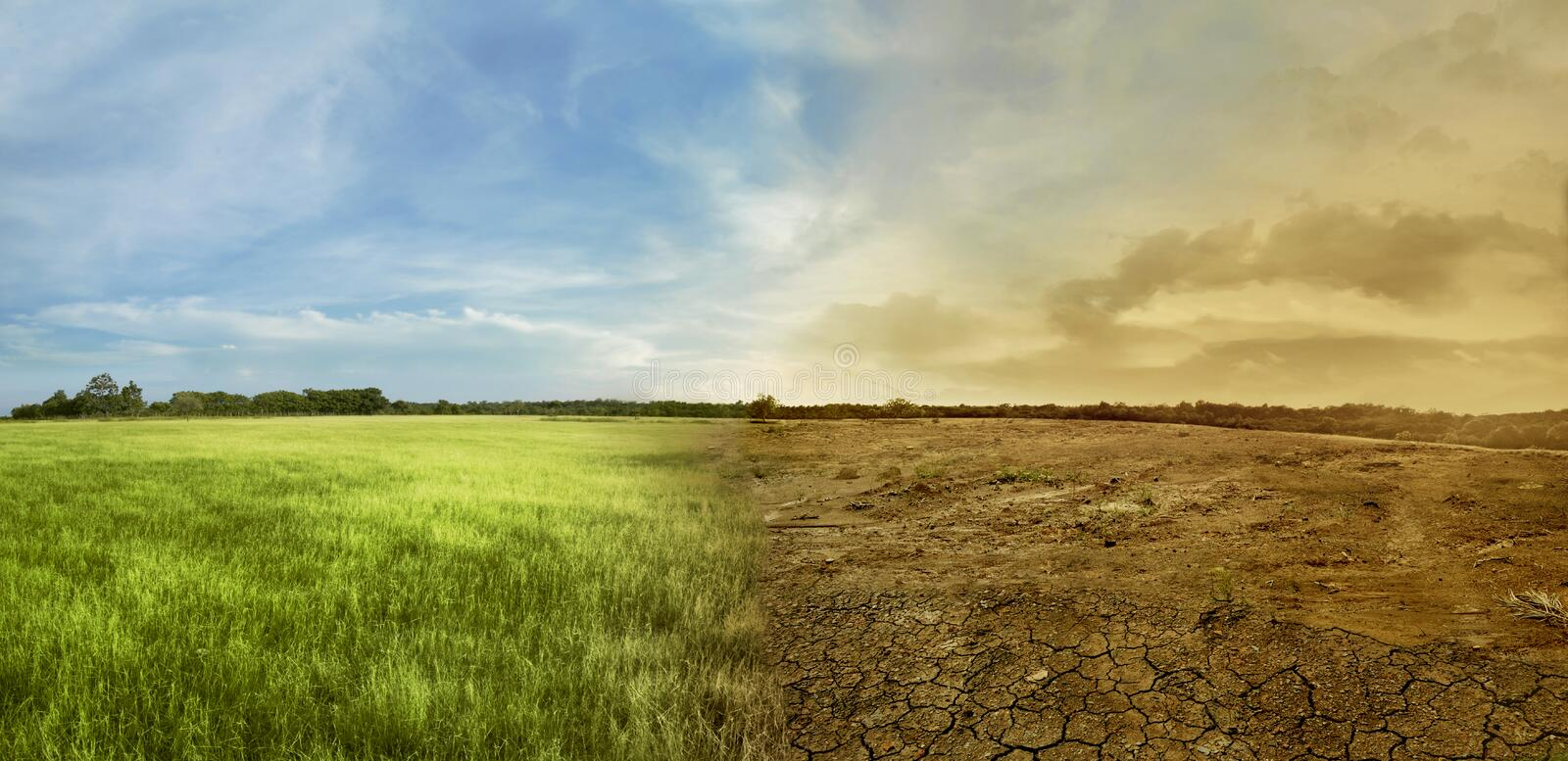 Landscape of meadow field with the changing environment stock photography