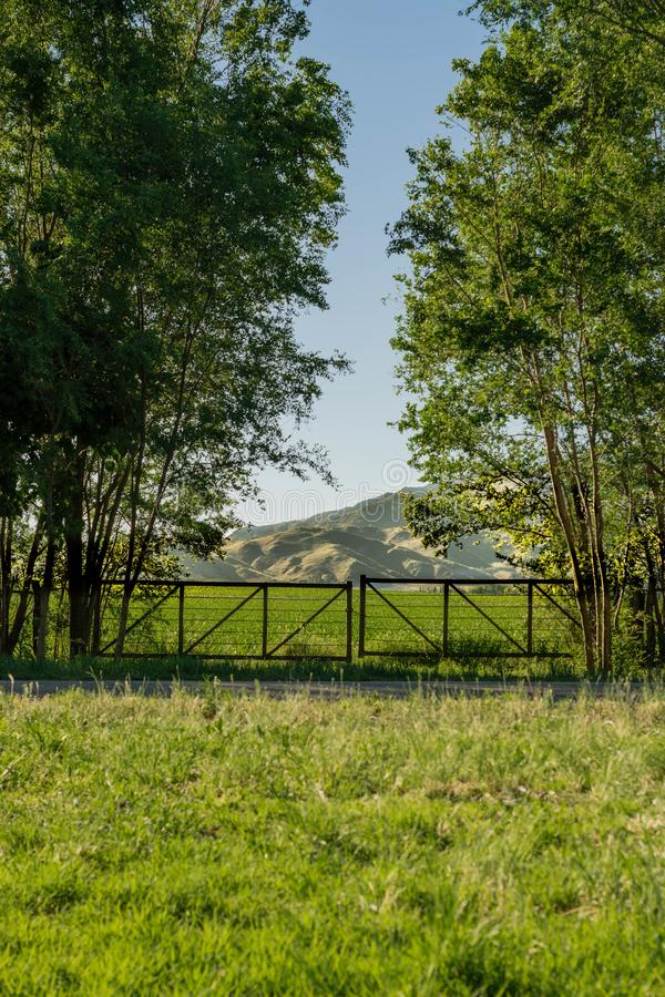 Entrance to the field with wooden door, trees and mountains in the background stock photography