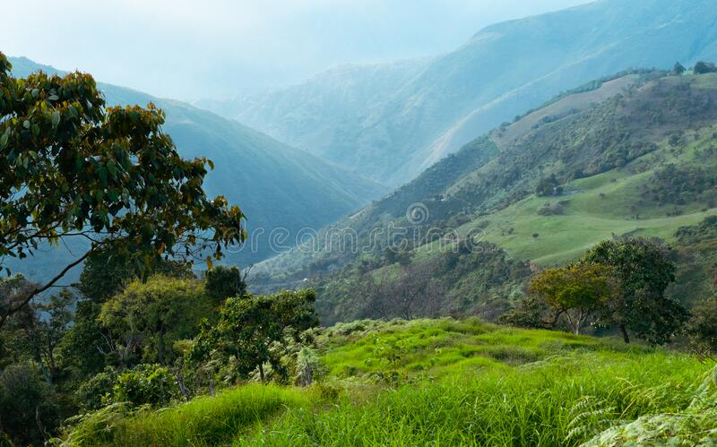 Landscape of meadows, mountains and trees in Colombia stock photos