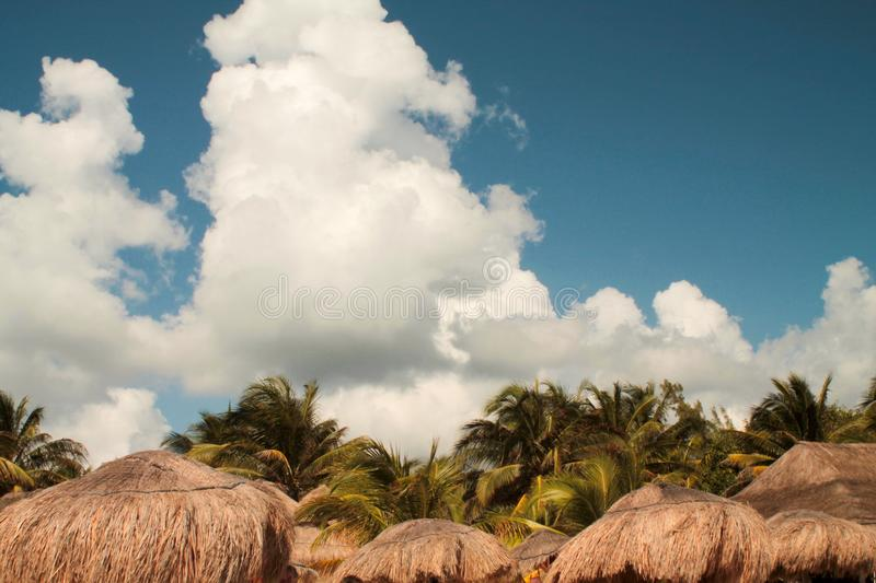 Landscape of mexican beach with straw umbrellas and palms stock photo