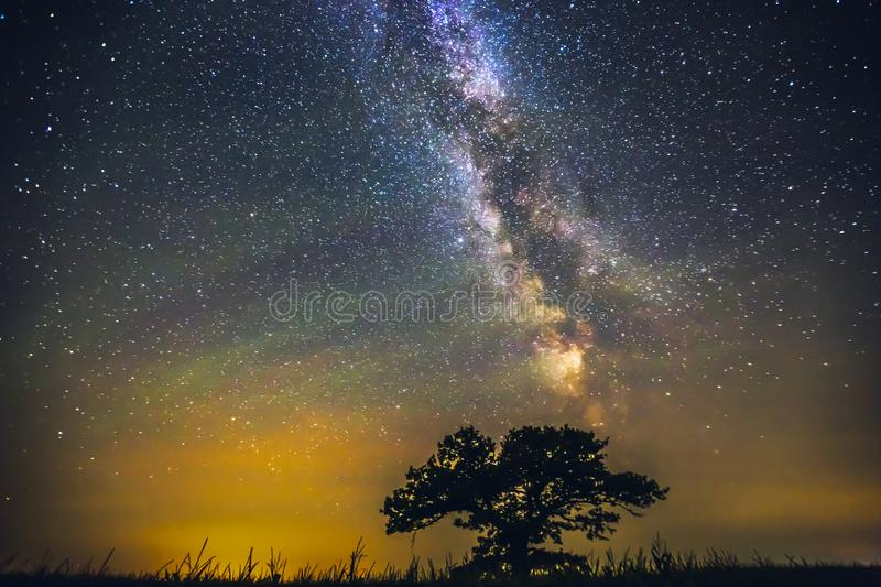 Landscape with Milky way galaxy over the oak tree stock photography