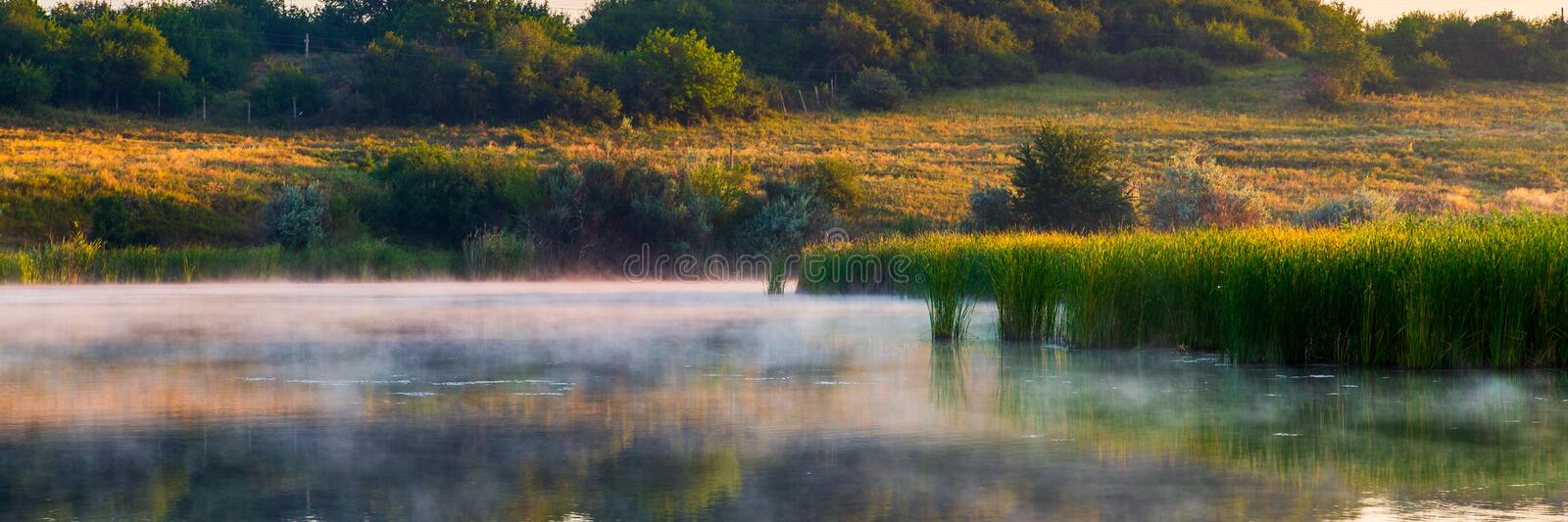 Landscape with misty morning on lake or pond royalty free stock image