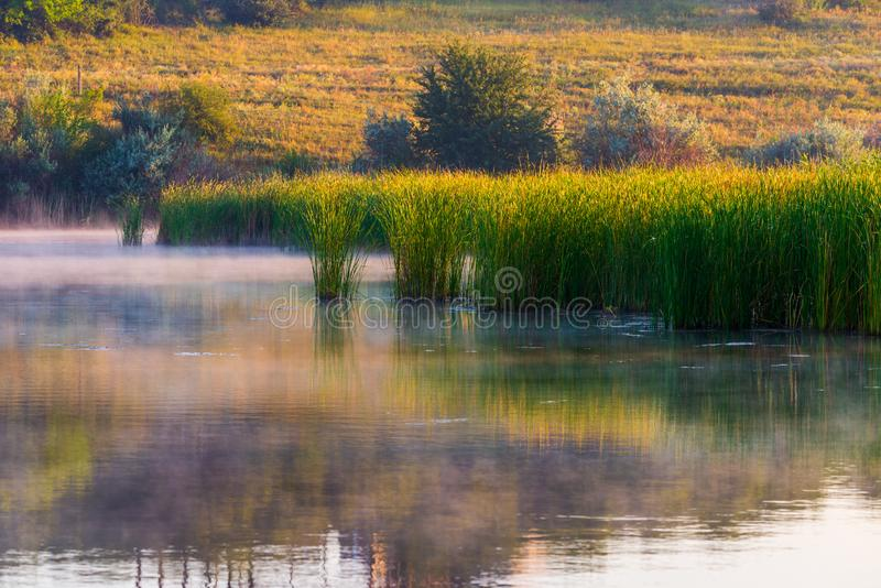 Landscape with misty morning on lake or pond. Nature, park, environment, fog, haze, smoke, outdoor, river, spring, sunlight, sunrise, tranquil, sky, water stock images