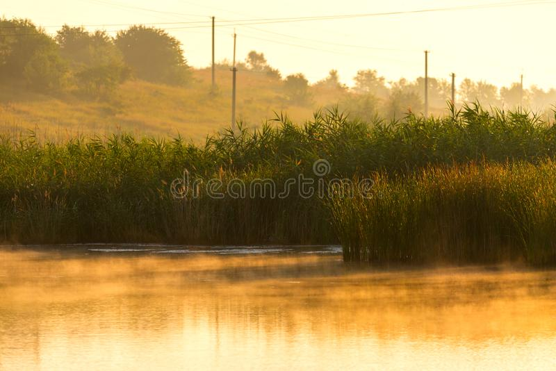 Landscape with misty morning on lake or pond. Nature, park, environment, fog, haze, smoke, outdoor, river, spring, sunlight, sunrise, tranquil, sky, water stock photos