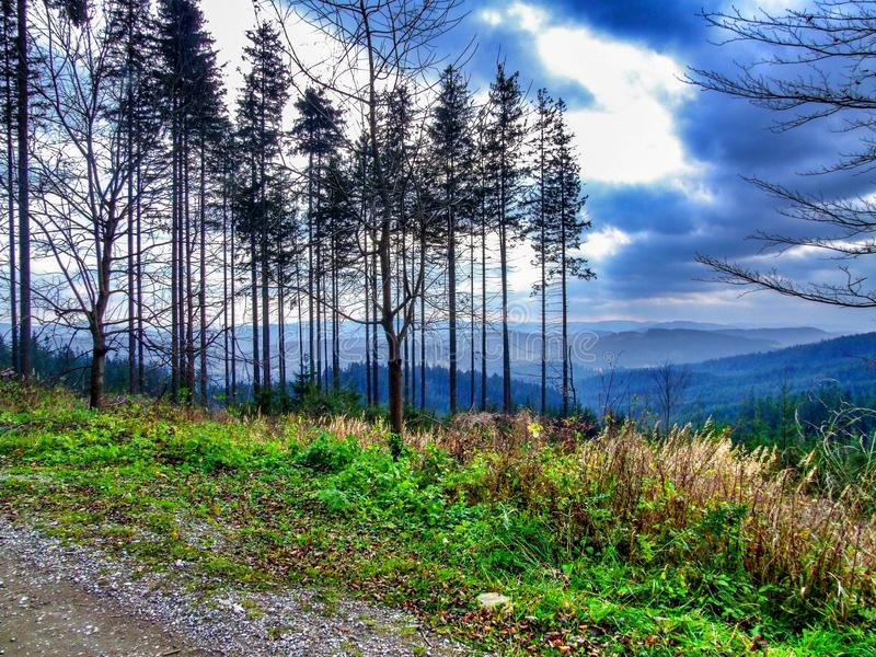 Landscape in Moravian-Silesian Beskids in northern Czechia. Photo taken near city of Mosty u Jablunkova during sunny November day, in 2008. Road and trees in stock photos