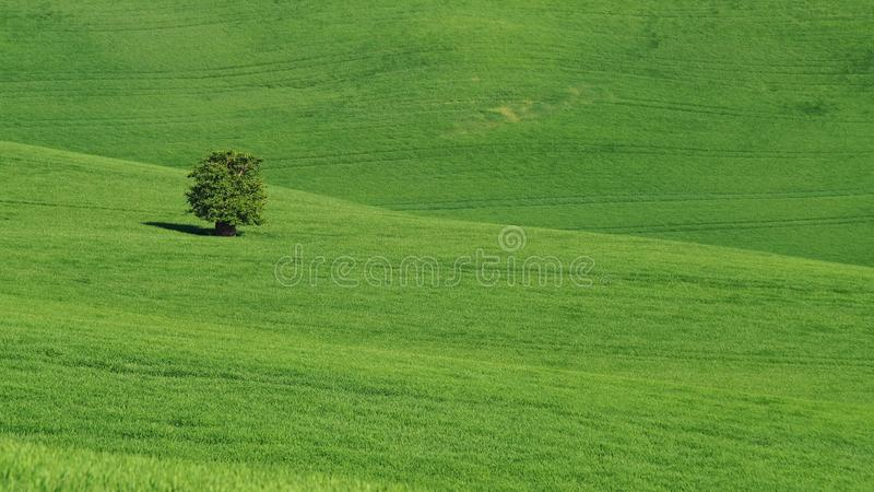 Landscape of Moravian Tuscany, southern Moravia, Czech republic royalty free stock photos