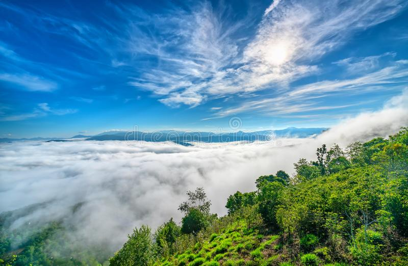 Landscape morning fog covered the valley royalty free stock images
