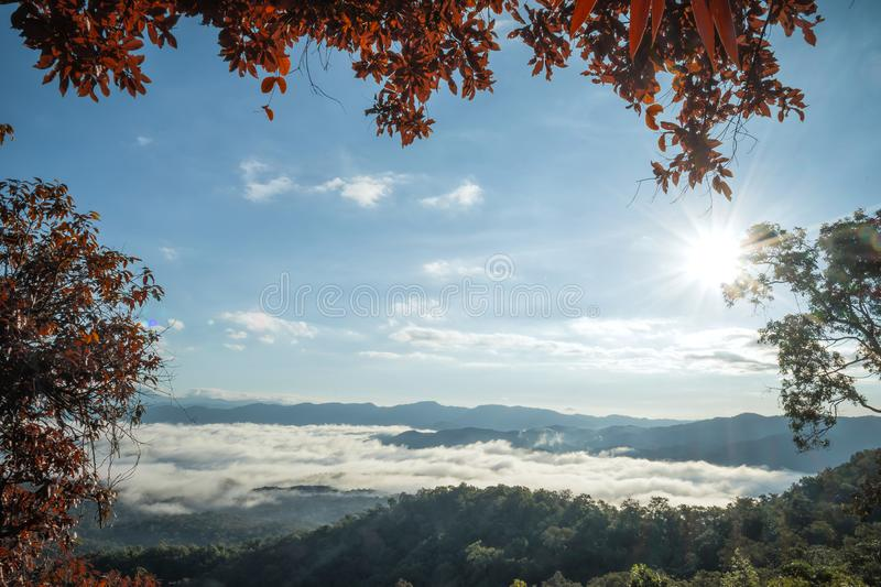 Landscape of Morning Mist with Mountain Layer at Mae Yom National Park, Phrae province royalty free stock photos