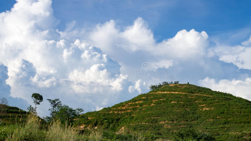 Landscape mountain overgrown dense green jungle tree with blue sky and white cloud. Nature green environment stock images