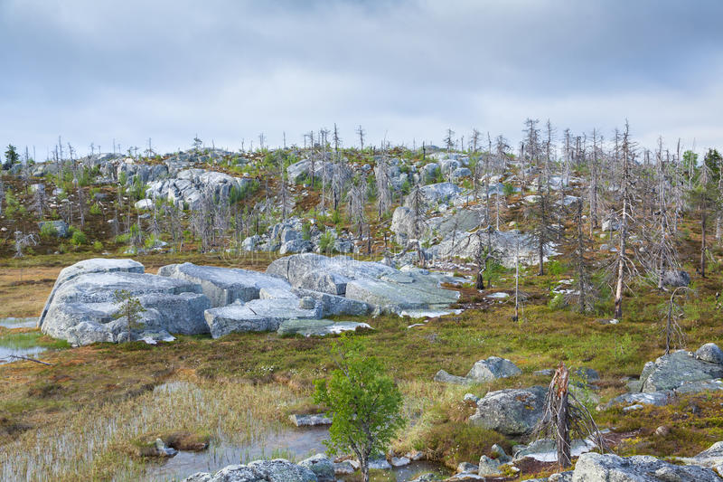 Landscape of the Mountain Vottovaara. In Karelia, Russia stock image