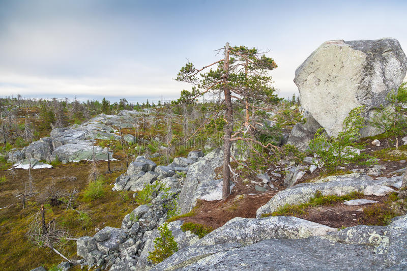 Landscape of the Mountain Vottovaara. Natural landscape of the Mountain Vottovaara in Karelia, Russia stock photo