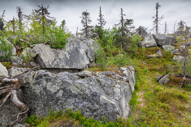 Landscape of the Mountain Vottovaara. Natural landscape of the Mountain Vottovaara in Karelia, Russia royalty free stock image