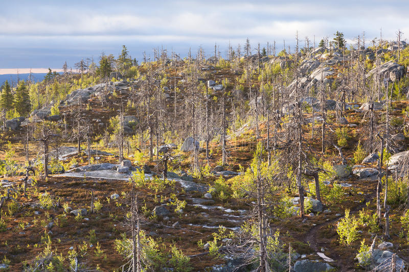 Landscape of the Mountain Vottovaara. Natural landscape of the Mountain Vottovaara in Karelia, Russia stock images