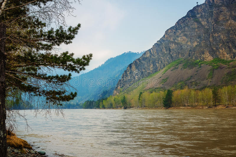 Landscape with mountains, forest and a river in front. beautiful scenery stock photo
