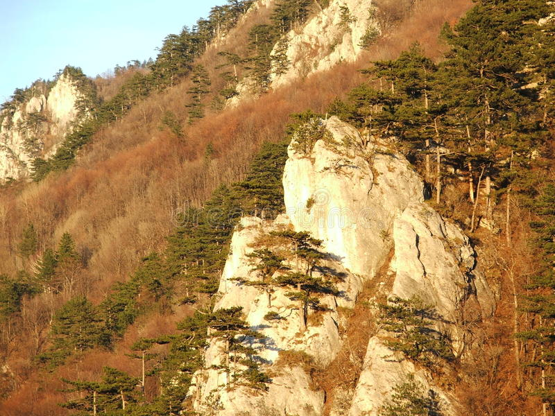 Landscape with mountains, rocks and trees stock photos