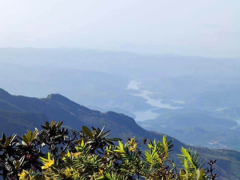 Landscape in the National Park Horton Plains, Sri Lanka royalty free stock photo