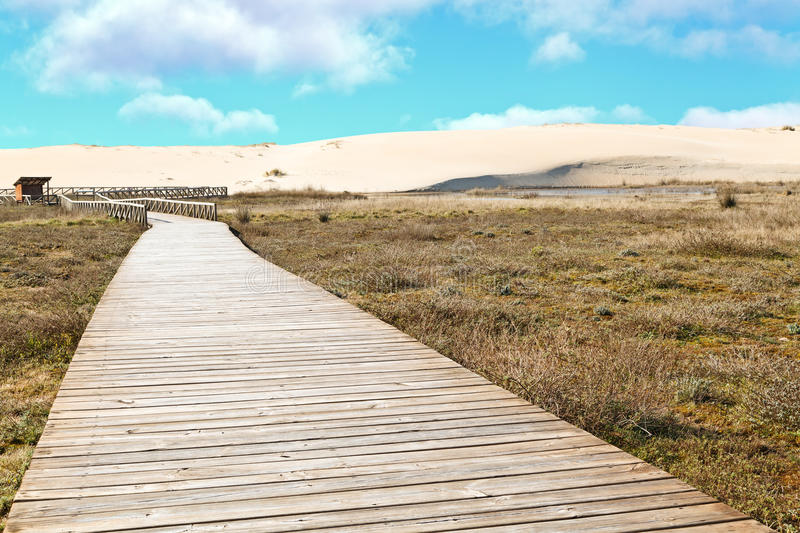 Sand Dune and Wooden Path, Corrubedo royalty free stock image