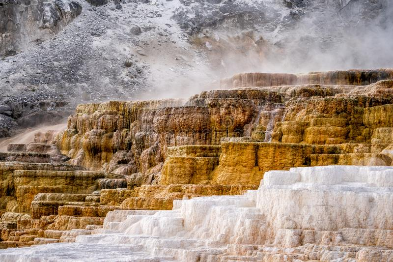 The landscape nature around Mammoth hot springs in Yellowstone national park in Wyoming , United States of America. The landscape nature and steam around Mammoth stock photos