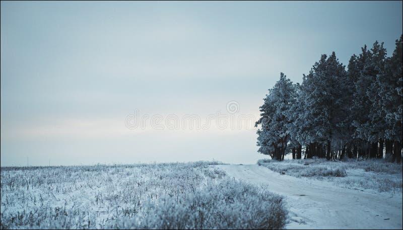Landscape nature. Blue sky sun nature landscape winter stock images