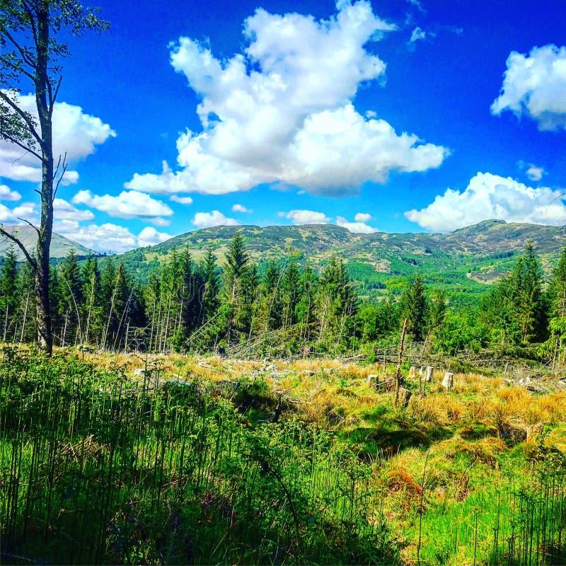 Landscape near loch drunkie royalty free stock photos