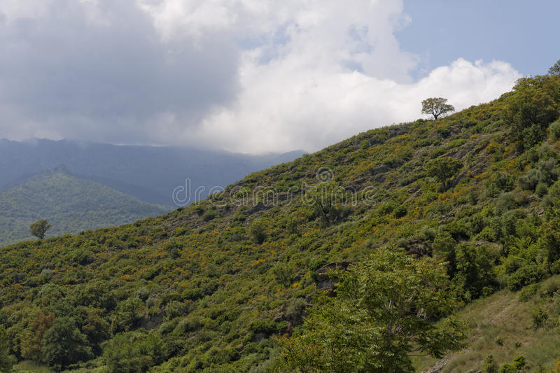 Landscape near Ponte Novu, Central Corsica, France, Europe royalty free stock photography