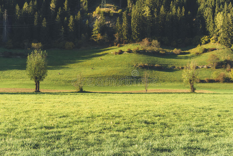 Landscape near Vipiteno - Sterzing. (Bolzano, Italy stock photo