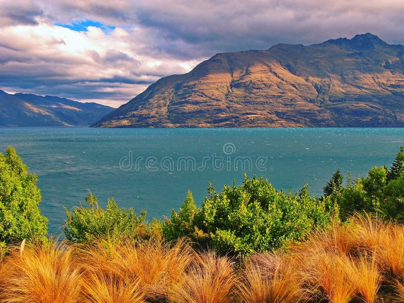 Landscape from New Zealand's South Island royalty free stock photography