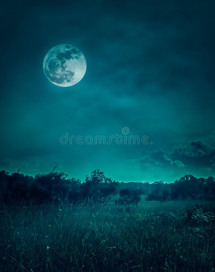 Landscape of night sky with clouds.Beautiful bright full moon royalty free stock photo