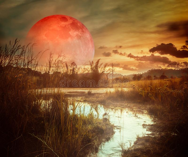 Landscape at night time in the forest lake with fogy and darkness sky super blood moon in the background stock image