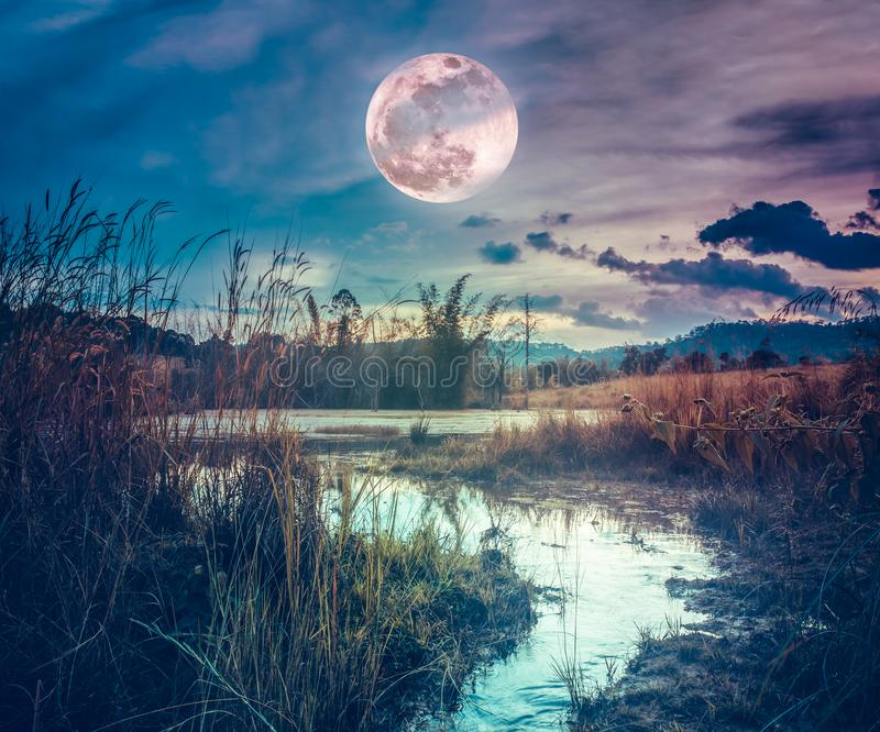 Landscape at night time in the forest lake with fogy and darkness sky super moon in the background stock image