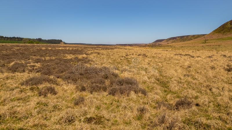 Landscape in the North York Moors National Park, UK royalty free stock photo