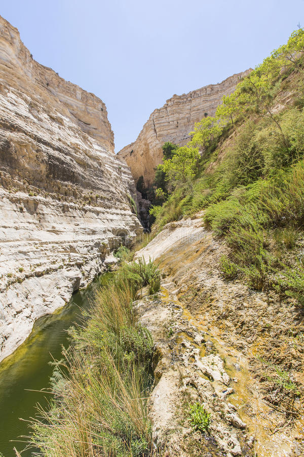 Free Landscape Of Deep Gorges Stock Photo - 45447560