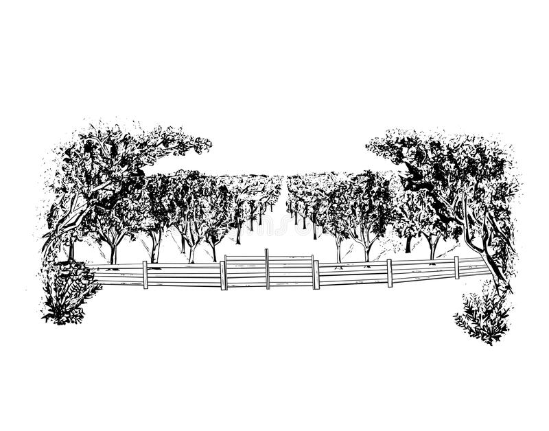 Landscape with orchard royalty free illustration