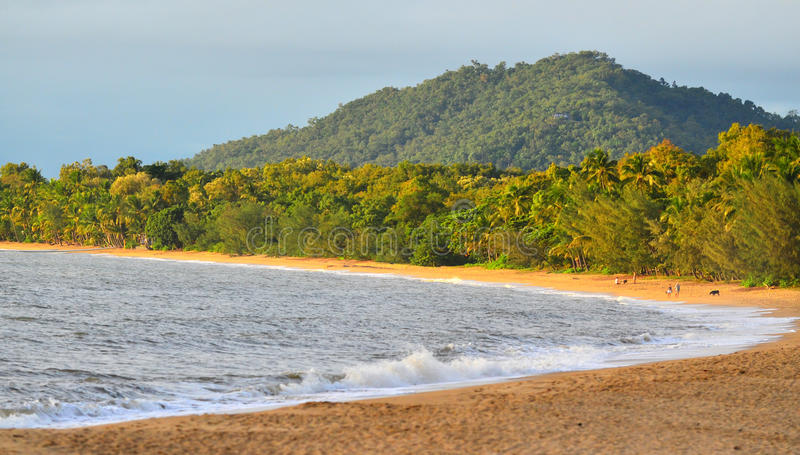 Landscape of Palm Cove Queensland Australia royalty free stock images