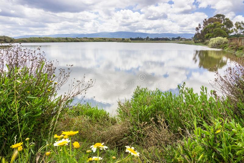 Palo Alto Baylands Park, California. Landscape in Palo Alto Baylands Park, south San Francisco bay area, California royalty free stock images
