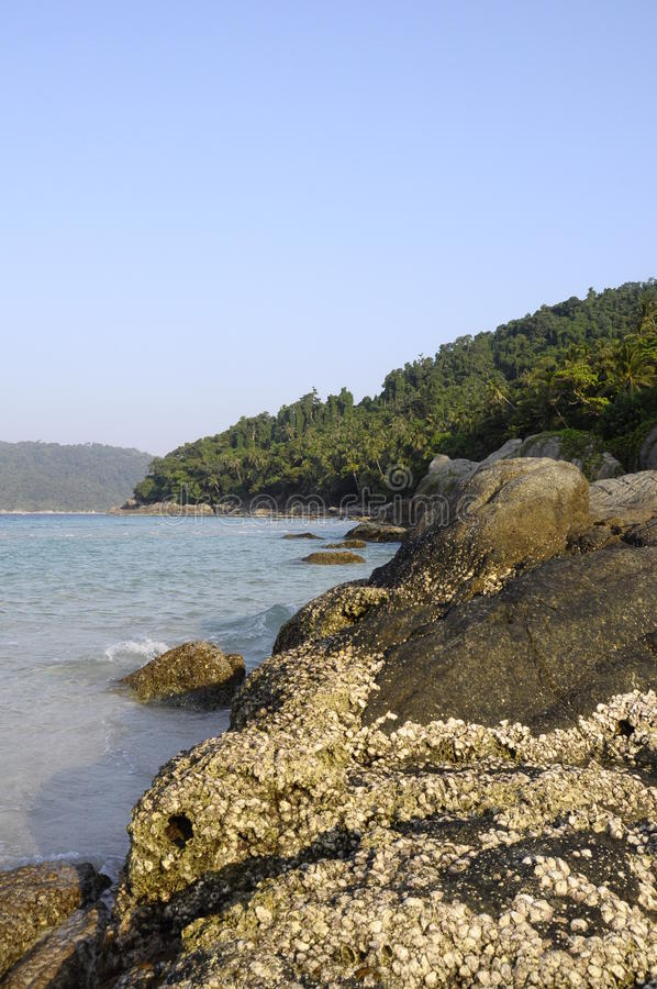 Landscape In Perhentian Island In Malaysia Royalty Free Stock Image