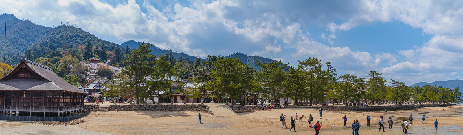 Landscape photo of the beach on Miyajima Island, Japan with Cherry blossoms. A Landscape photo of the beach on Miyajima Island, Japan with the pagoda and Cherry stock photography