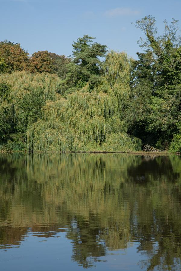 Peaceful village pond photo. Landscape photo of a beautiful village pond on a summers day stock image