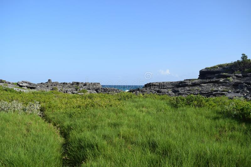 Landscape photo leading to the ocean. Landscape photo of a field in Bermuda which lead to a rocky edge of the island stock photography