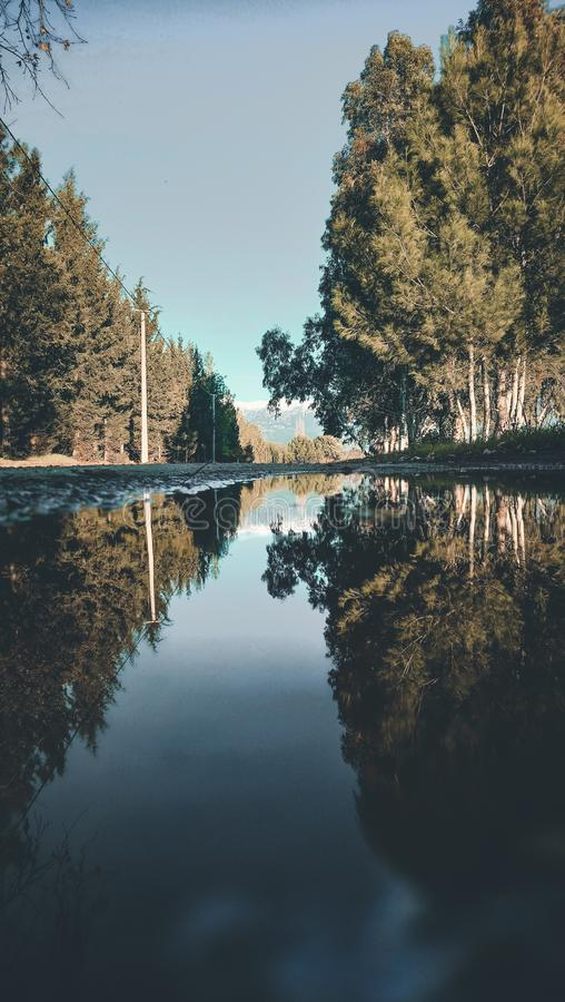 Landscape Photo of River Between Trees stock photos