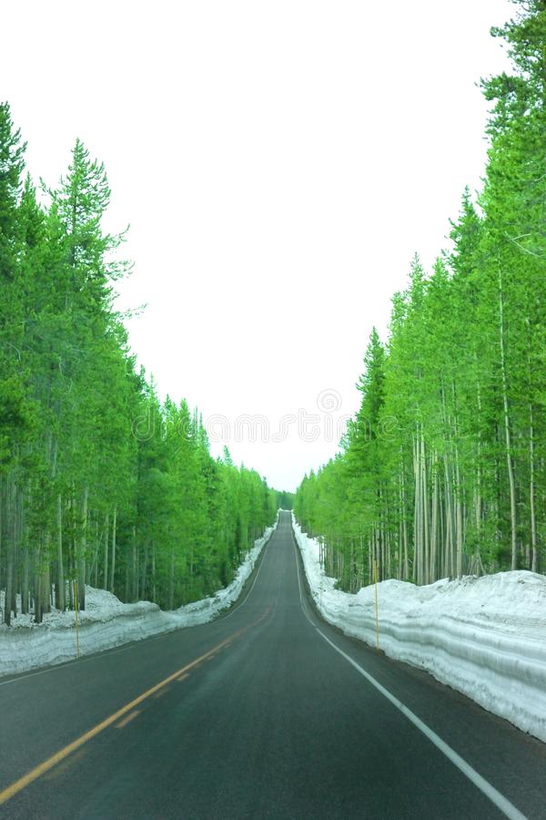 Landscape photo of up hill road with green trees and snow covered side royalty free stock photography