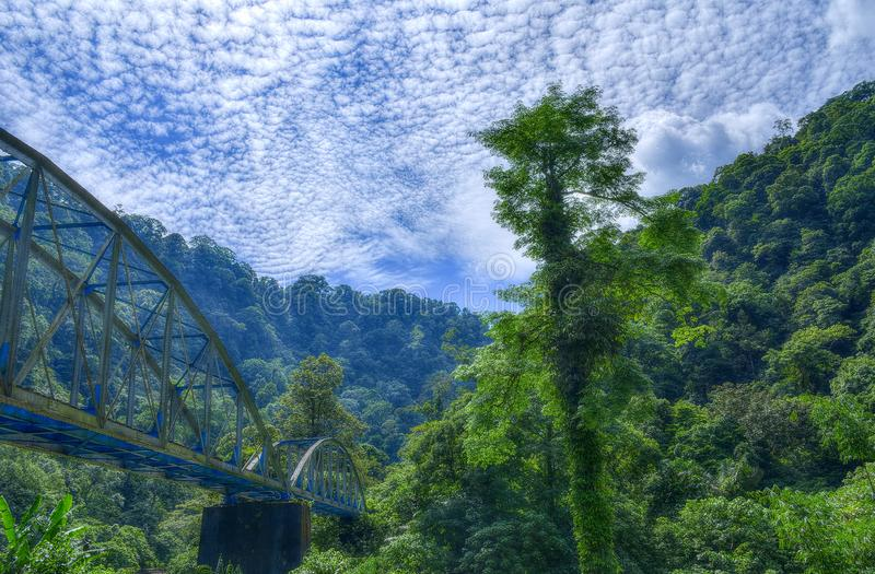Landscape of Train Bridge in the Forest with Green Trees Blue Sky and White Cloud. Landscape Photograph of Train Bridge in the Forest with Green Trees Blue Sky royalty free stock photo