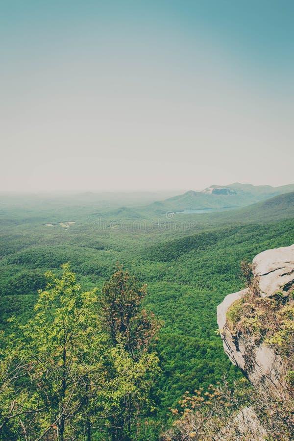South Carolina Upstate Green Landscape royalty free stock photos
