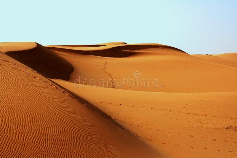 Landscape Photography Of Desert Free Public Domain Cc0 Image