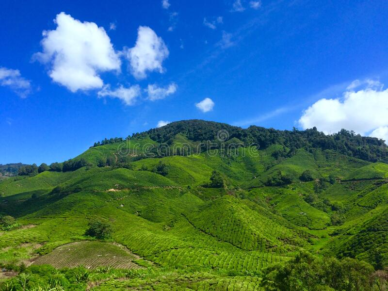 Landscape Photography of Green Hill Under Blue Sky and White Clouds during Daytime royalty free stock photography