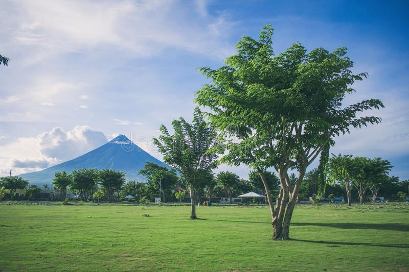 Landscape Photography of Open Field With Tree With Mayon Volcano Background stock photos