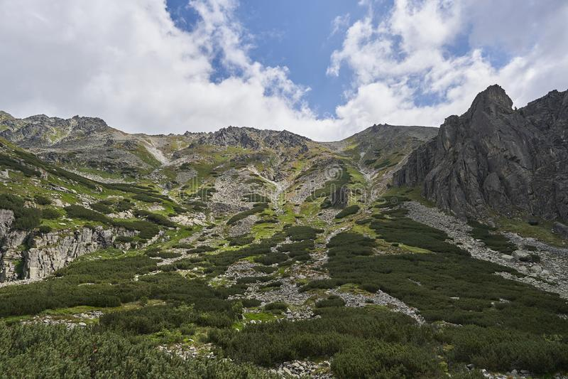 Landscape Picture of alpine countryside in High Tatras mountains in Slovakia. stock images
