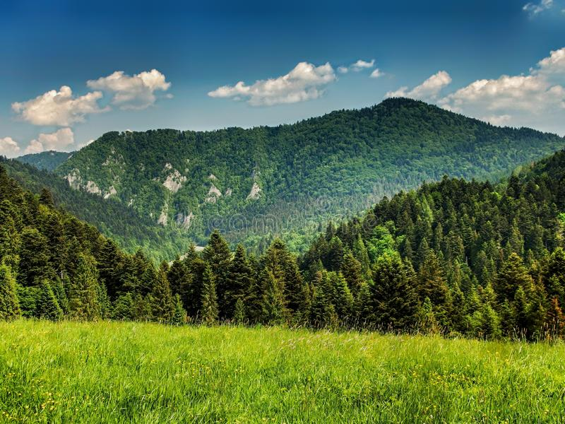 Landscape of Pieniny range in southern Poland royalty free stock image