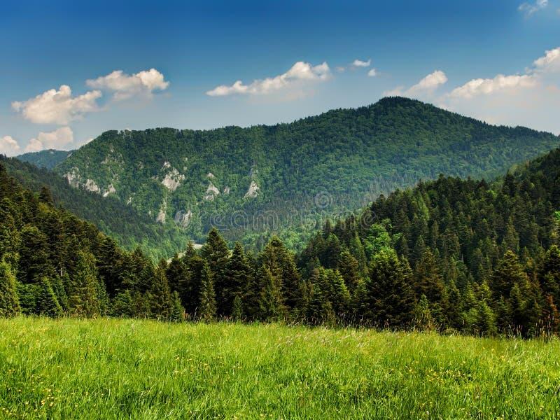 Landscape of Pieniny range in southern Poland stock photo